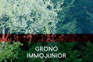 3-GRONO-IMMOJUNIOR