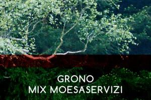4-Mixmoeservizi