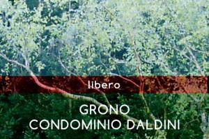 5-Grono-Condominio_Daldini-LIBERO