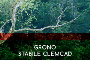 grono-stabile-clemcad